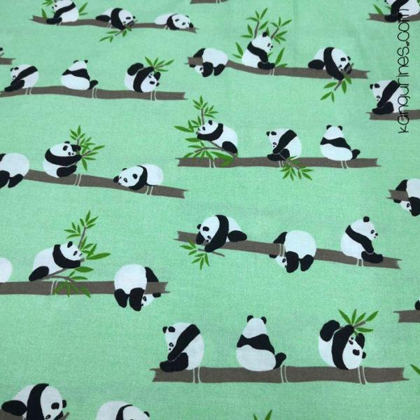 Pandas bambú